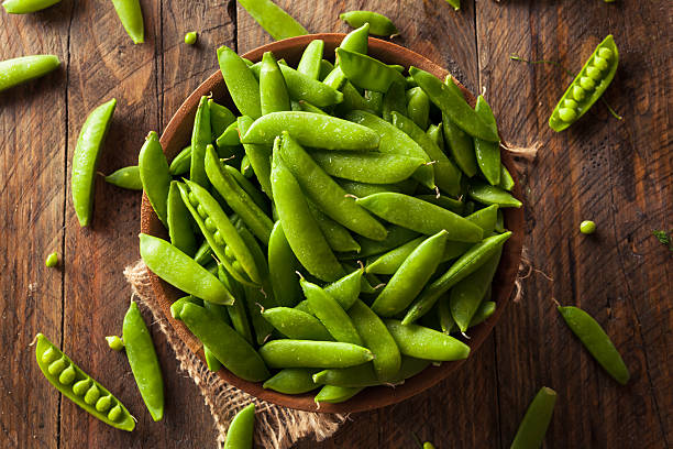 guisantes orgánicos verde azúcar de encaje a presión - vaina fotografías e imágenes de stock