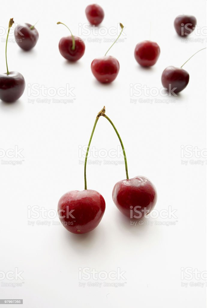 organic group of british cherry's royalty free stockfoto