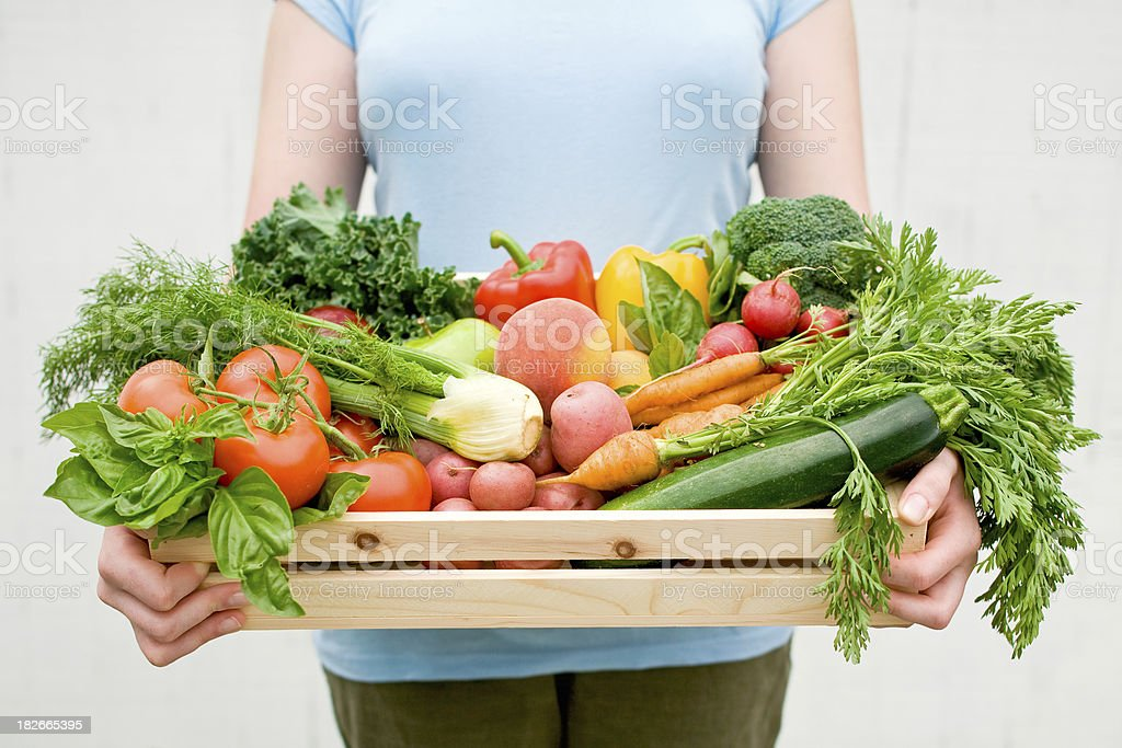 Organic Harvest royalty-free stock photo