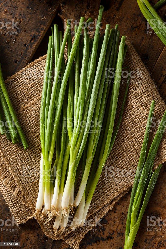 Organic Healthy Green Onion stock photo