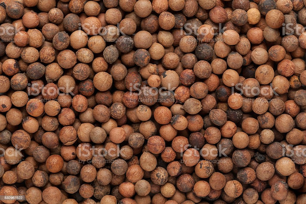 Organic Indian sandalwood (Santalum album) seeds. stock photo