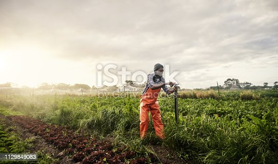 Shot of a young man operating the sprinkler system while working on a farm