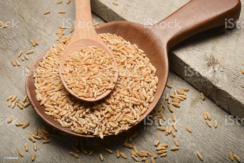 Organic Kamut Grains stock photo