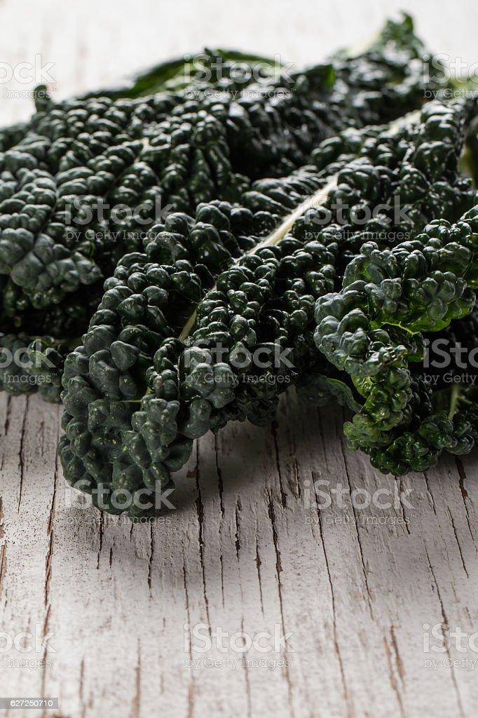 Organic Lacinato Kale close shot stock photo