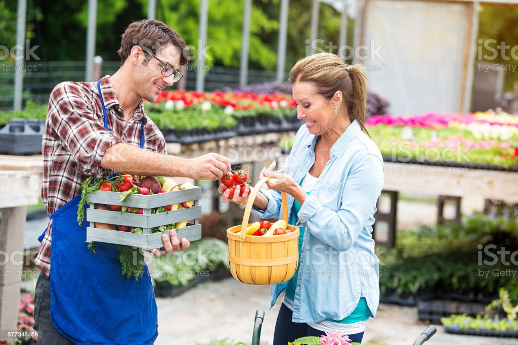 Organic local farmer giving veggies to shopper outside stock photo