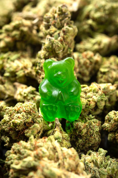 Organic Marijuana Green Gummy Bear Candy stock photo