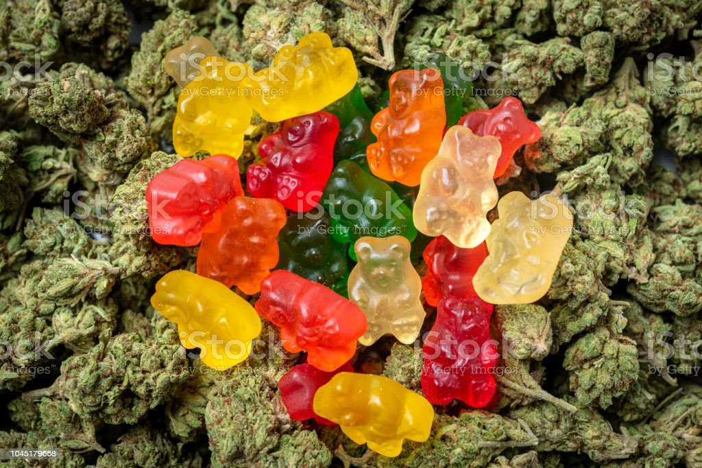 Organic Marijuana Gummy Bear Candies stock photo