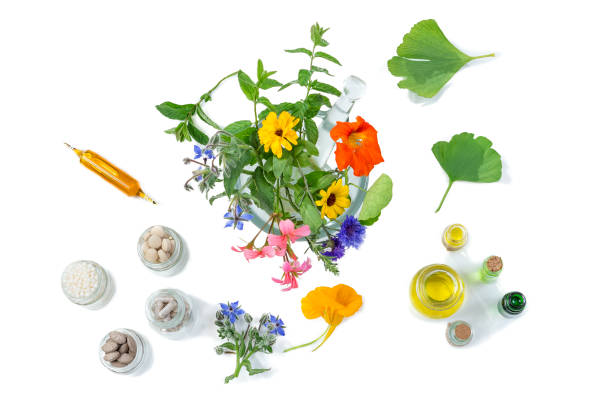 Organic medical pills with herbal plant in motar on white background. ethnoscience concept. top view stock photo