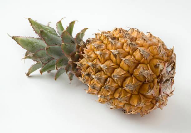 Bio-Mini-Ananas isoliert auf weißem Hintergrund. – Foto