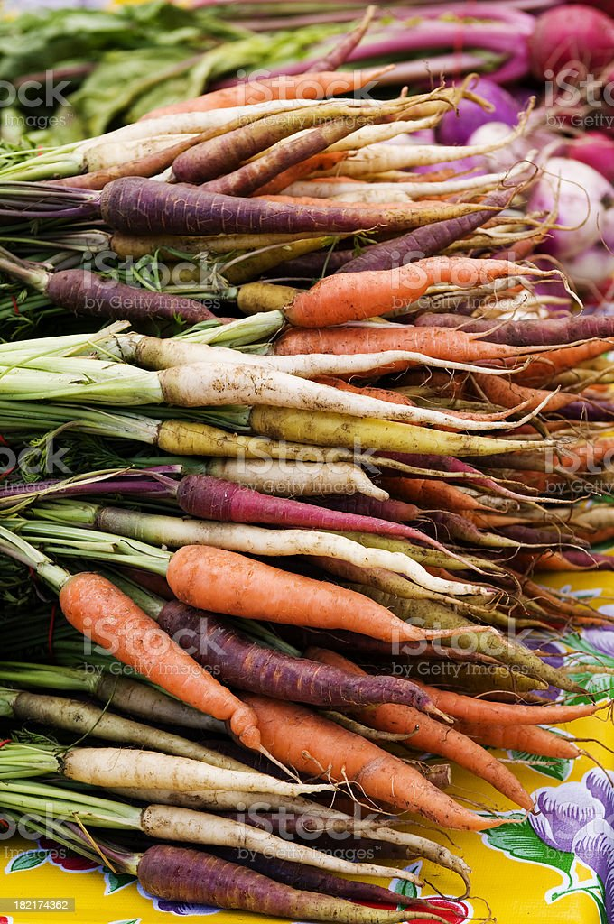 Organic Multi-colored Carrots royalty-free stock photo
