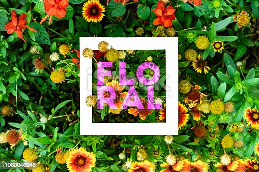 655667160 istock photo organic natural leaves and flowers background pattern flat lay with text floral f 1060046948
