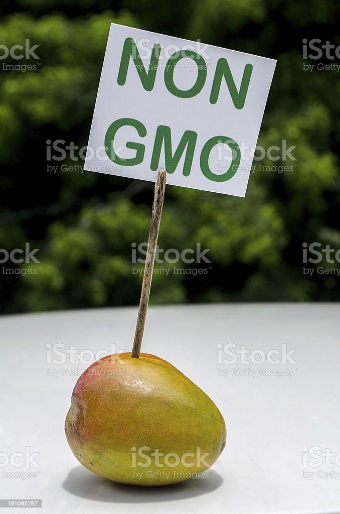 organic non gmo mango royalty-free stock photo