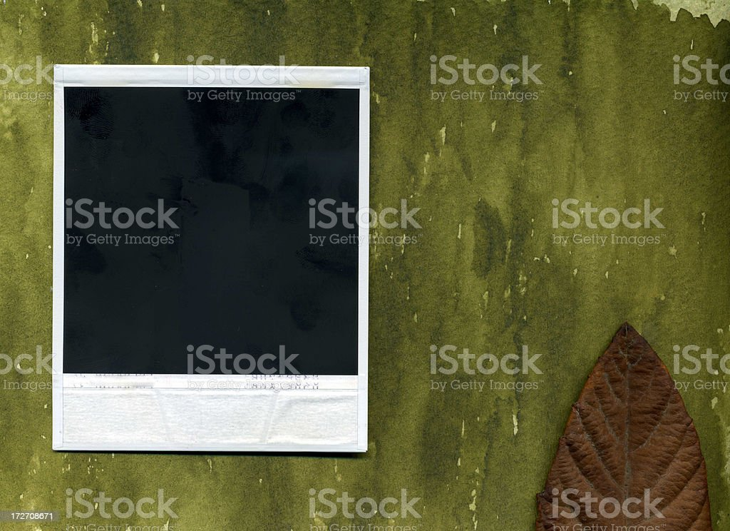 Organic picture royalty-free stock photo