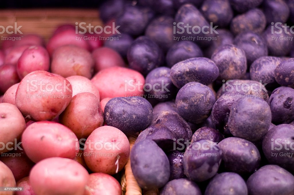 Organic Potatos royalty-free stock photo