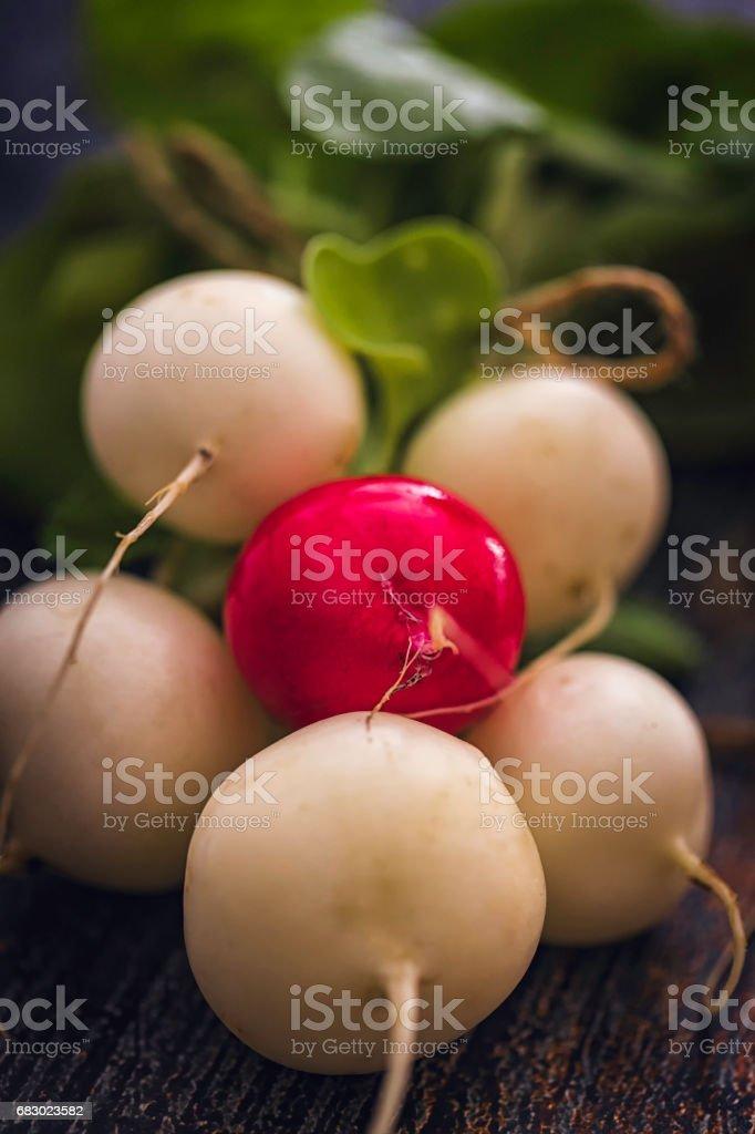 Organic Radishes on Rustic Background foto de stock royalty-free