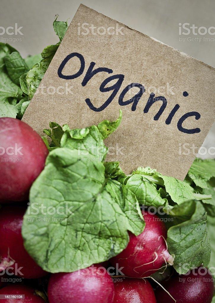Organic Radishes royalty-free stock photo