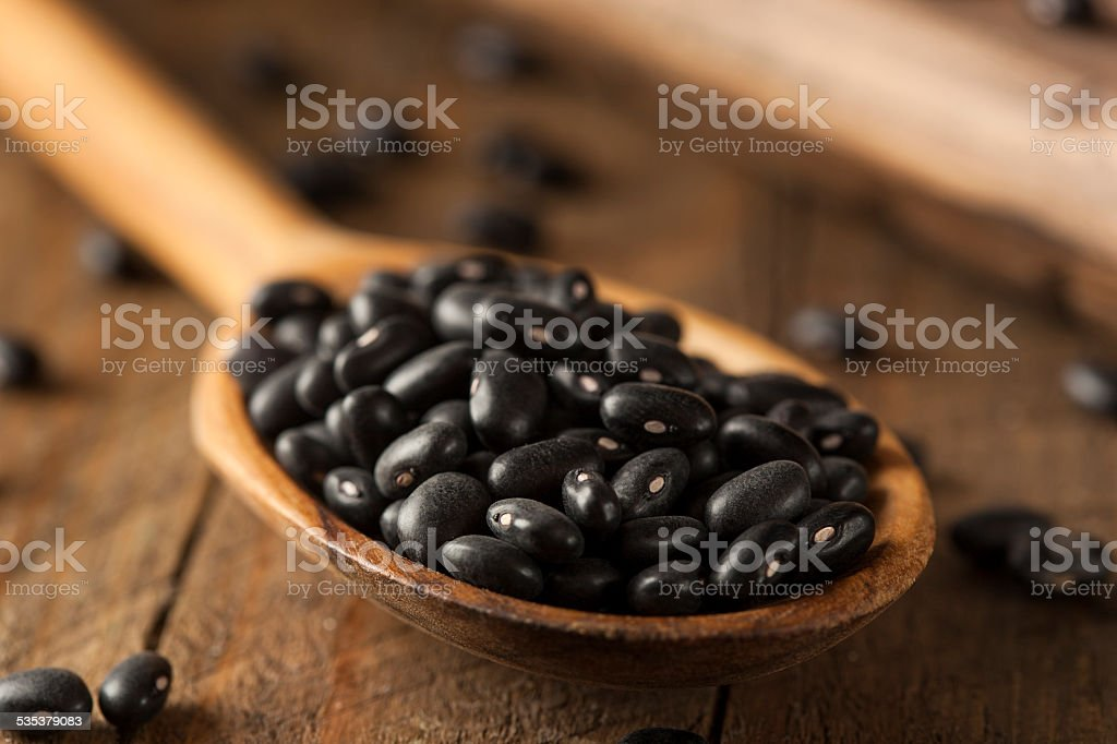 Organic Raw Dry Black Beans stock photo