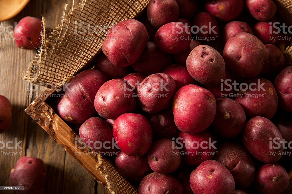 Organic Raw Red Potatoes stock photo