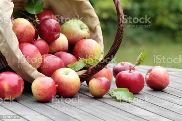 Biologische Rode Appels In Een Mandje Op De Oude Tabel Stockfoto en meer beelden van Appel