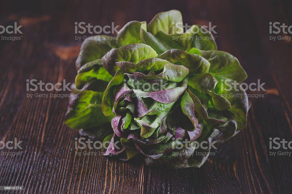 Organic Red Oakleaf lettuce - Photo