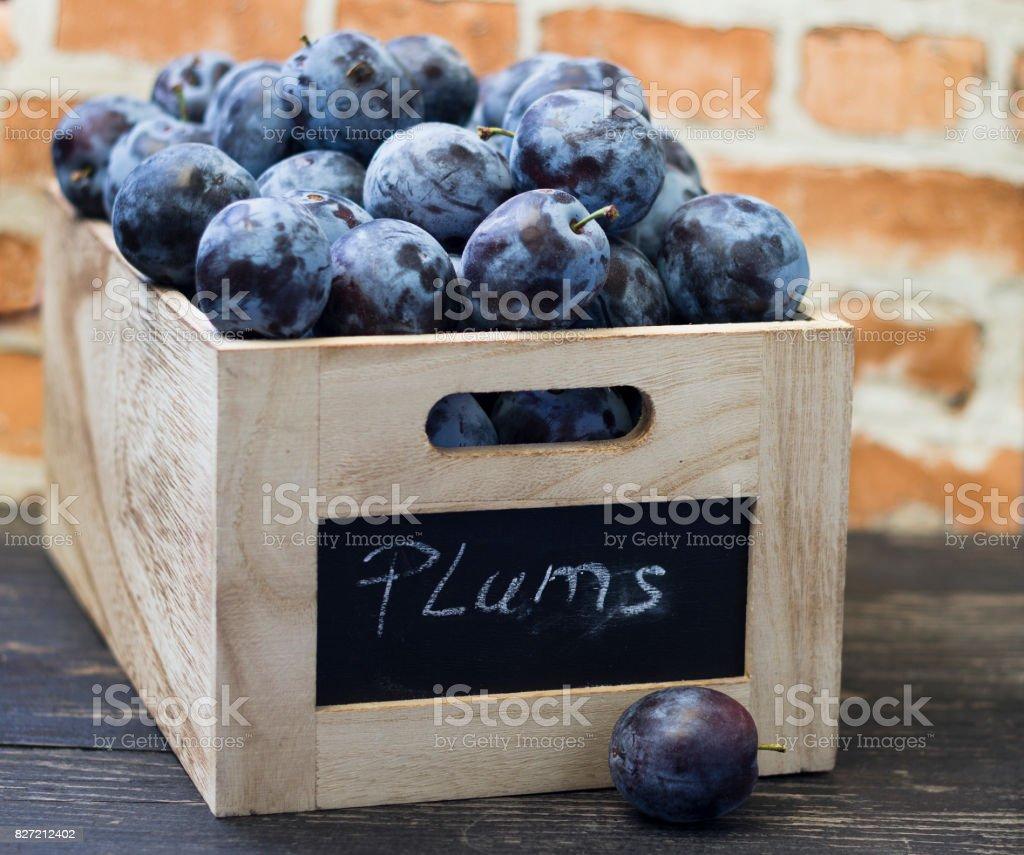 Organic red plum stock photo