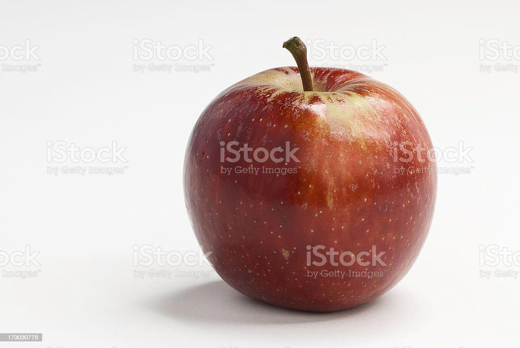 Organic Royal Gala Apple stock photo