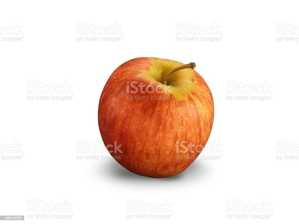 Organic Royal Gala Apple stock photo