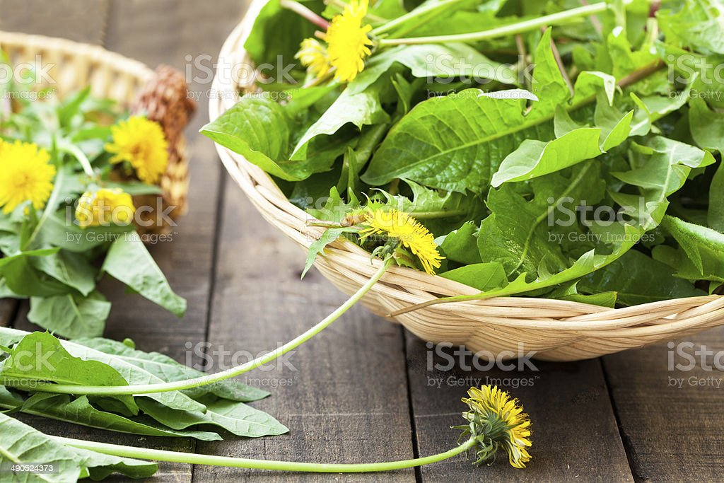 organic salad stock photo