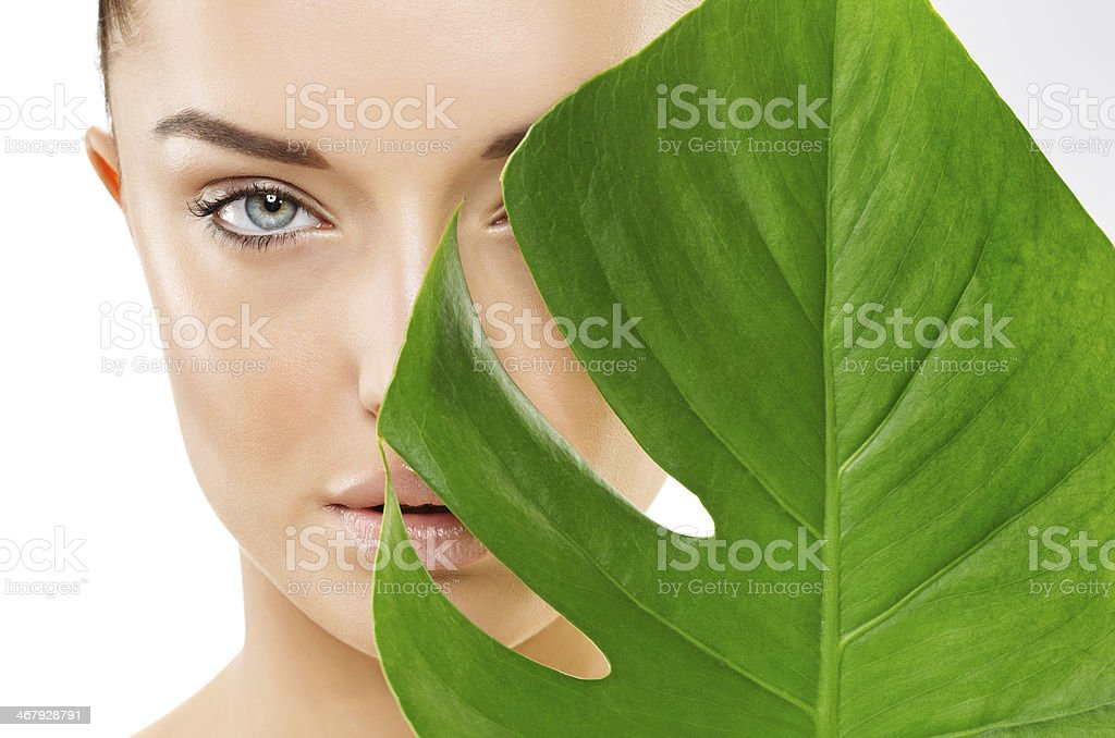 organic skin care royalty-free stock photo
