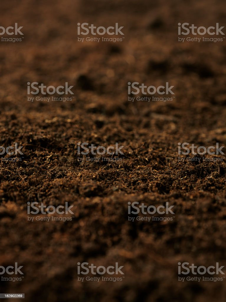 Organic Soil royalty-free stock photo