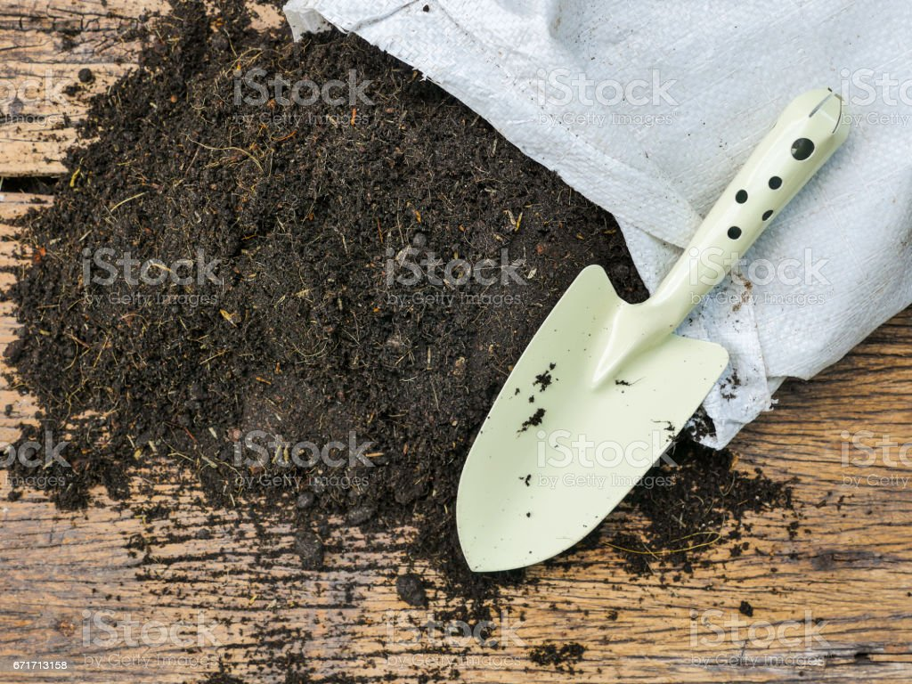 Organic soil with bag for planting on wood background stock photo