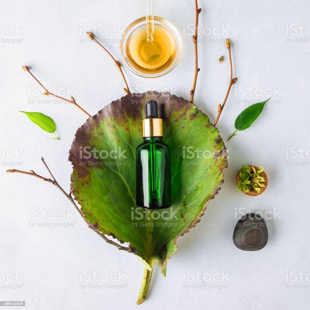 Biologische Spa cosmetische met kruideningrediënten. Plantaardige serum voor huid met kruidenextracten. glazen flesje met een pipet - Royalty-free Anti-veroudering Stockfoto