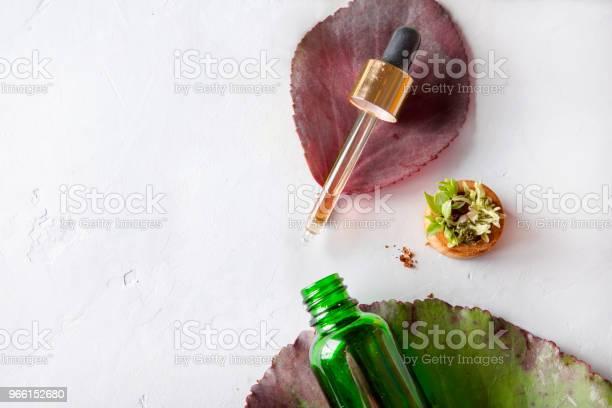 Ekologiska Spa Kosmetiska Med Växtbaserade Ingredienser Vegetabiliska Serum För Hud Med Örtextrakt Glasflaska Med Pipett-foton och fler bilder på Acne