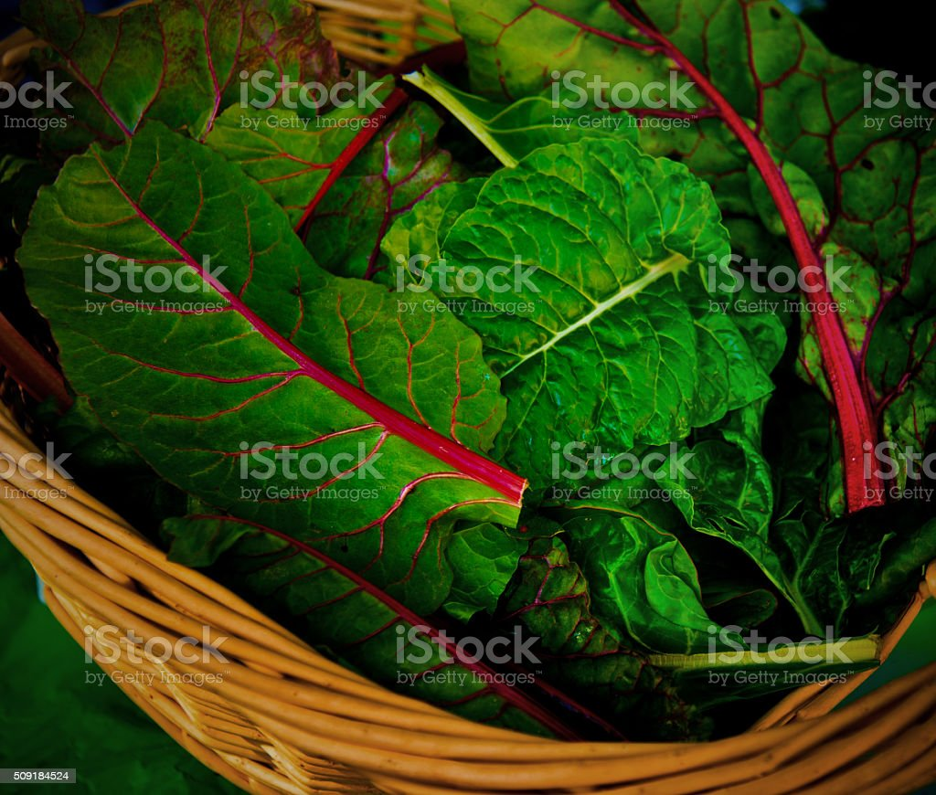 Organic Swiss Chard in Market Basket, Bright Green with Red Stems