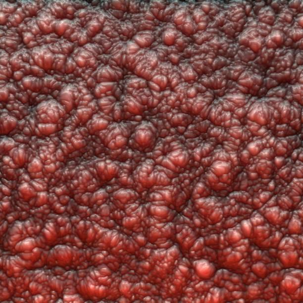organic texture - meat texture imagens e fotografias de stock