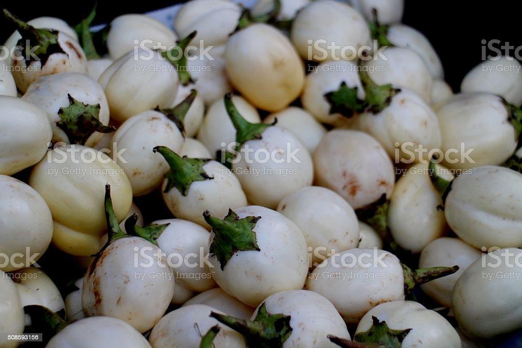 Organic Thai white eggplant stock photo