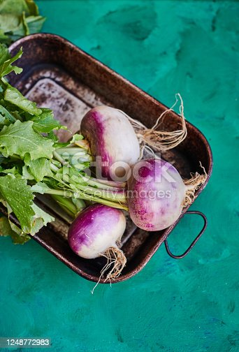 Organic Turnips in vintage roasting tray on green painted surface