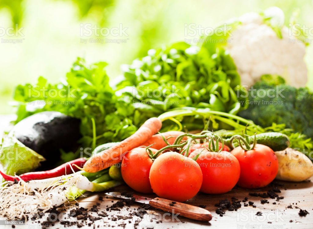 Organic Vegetables Fresh From Market royalty-free stock photo