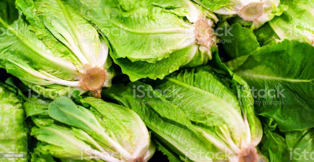 Organic vegetables. Fresh vegetable. Lettuce for making a salad. Food concept.'n stock photo