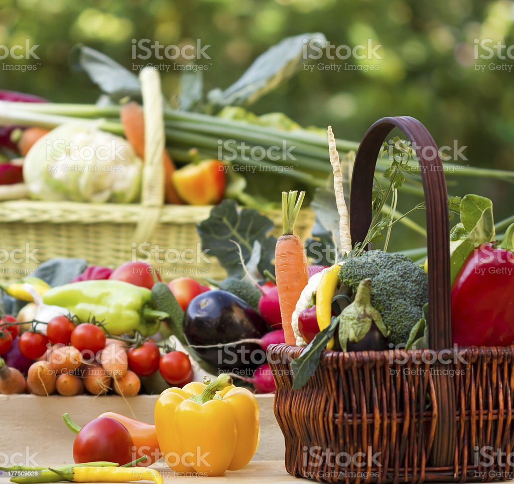 Organic vegetables in the wicker basken royalty-free stock photo