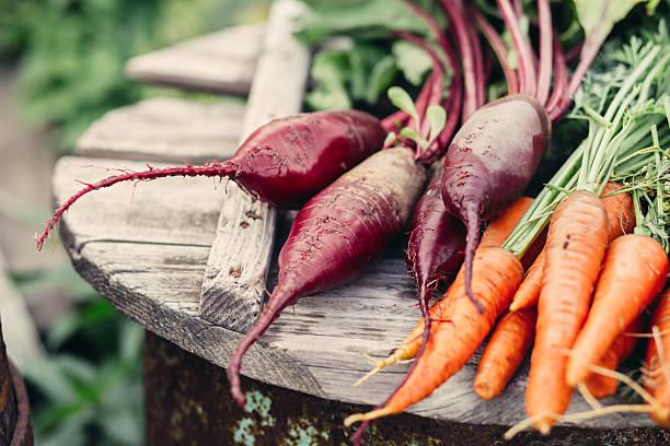bio-gemüse - bio lebensmittel stock-fotos und bilder