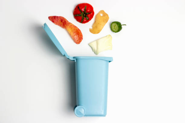 Organic waste and trash can on white background, the concept of garbage sorting stock photo