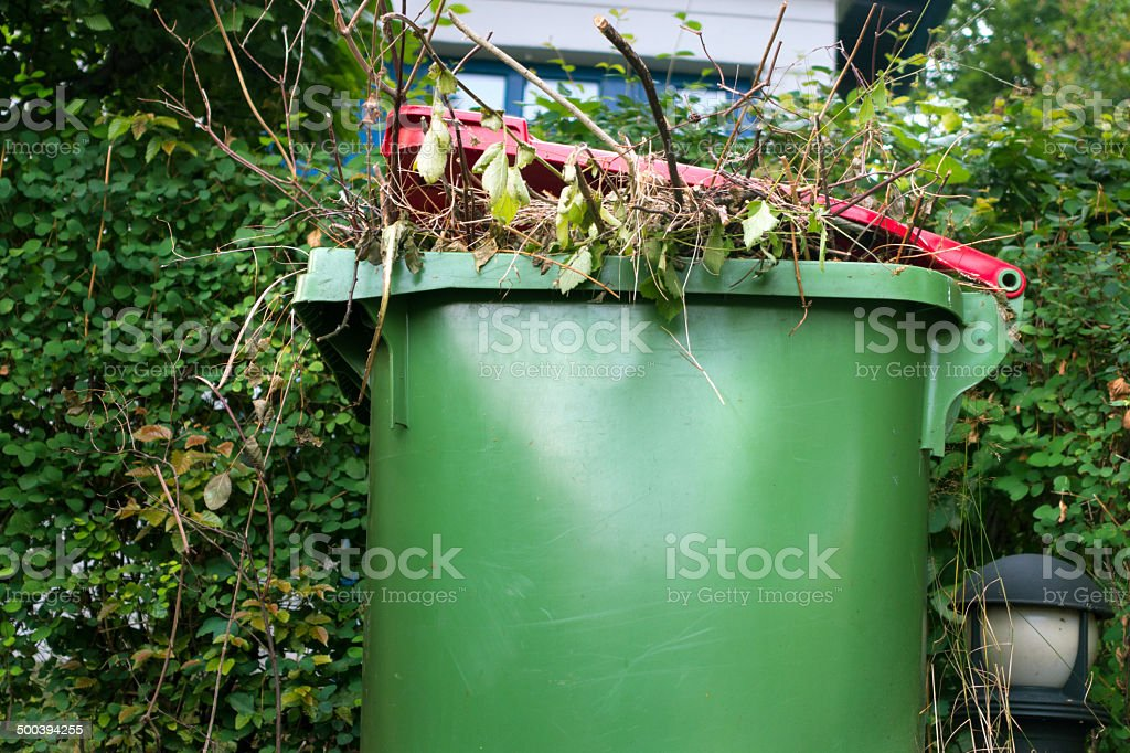 Organic waste in a recycle bin outdoors stock photo