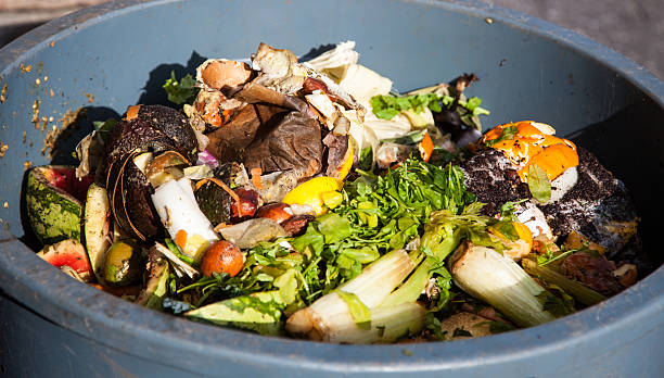 organic waste - food waste bildbanksfoton och bilder