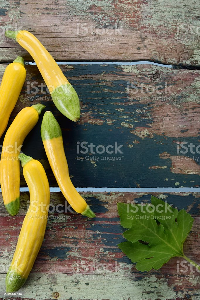 organic zephyr squash stock photo more pictures of color image