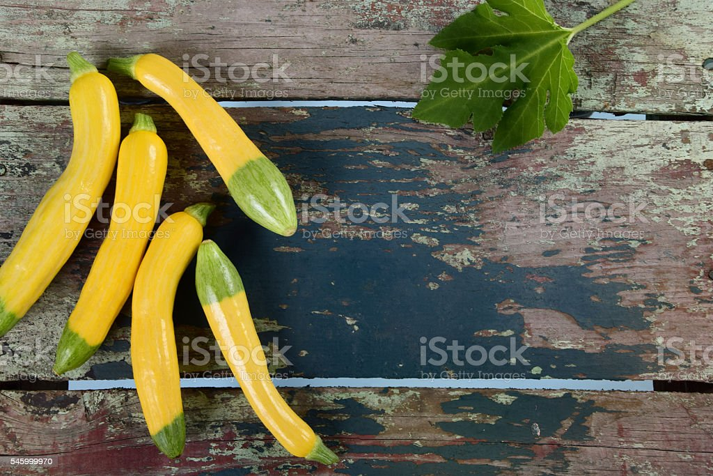 Organic Zephyr Squash stock photo