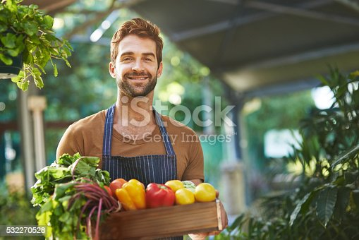 istock Organically grown produce without the pesticides 532270528