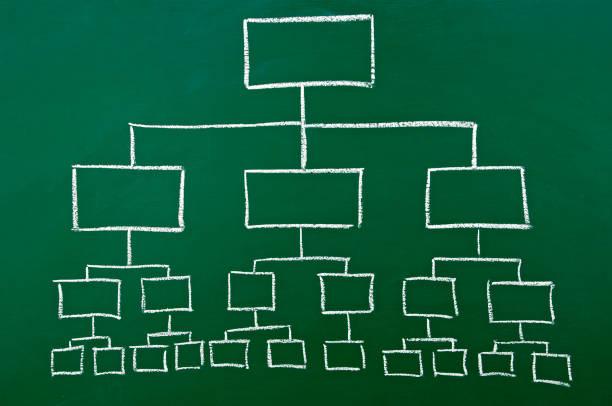 organization chart auf einer Tafel – Foto