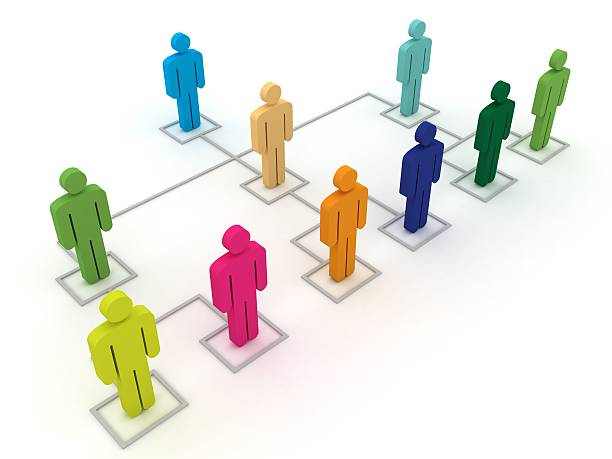 Organization Chart  organization chart stock pictures, royalty-free photos & images