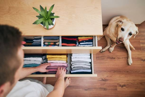 Organizing and cleaning home stock photo